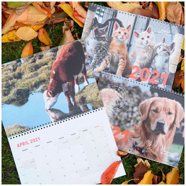 2021 Vægkalender - flere varianter